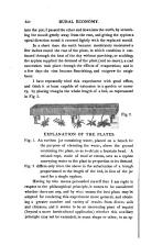 Страница 320