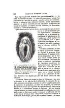 Страница 314