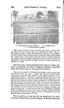 Страница 452