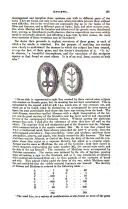 Страница 61