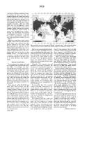 Страница 1916