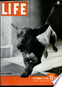 23 сеп 1946