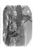 Страница 371