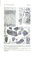 Страница 206