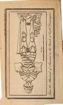 Страница 1155