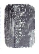 Страница 359